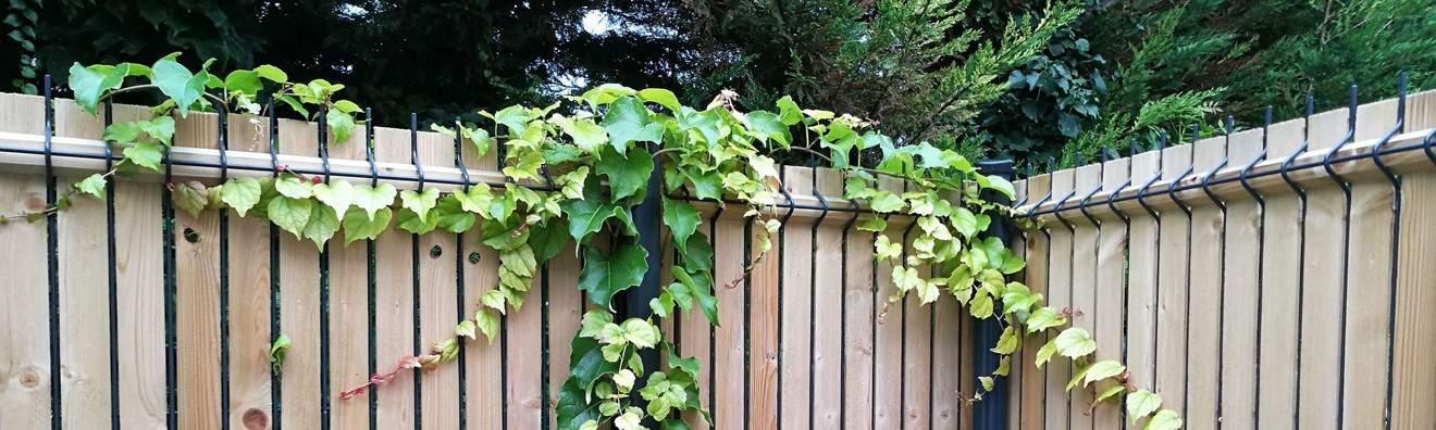 Brises vues et clôtures bois